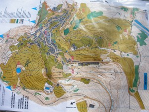 Mapa de orientación